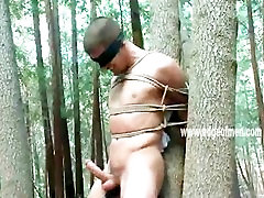 Naked stud gets tied up to a tree and blindfolded by a dominating